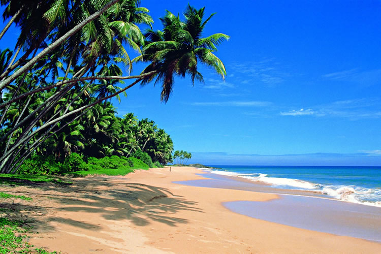 Sri Lanka Culture Beach Tour